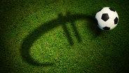 Ein Fußball liegt auf auf einem Stück Rasen, auf dem ein Euro-Zeichen als Schatten zu sehen ist. © fotolia/thaiview