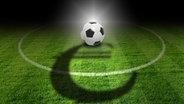 Ein Fußball liegt auf auf einem Stück Rasen, auf dem ein Euro-Zeichen als Schatten zu sehen ist. © fotolia/jarma